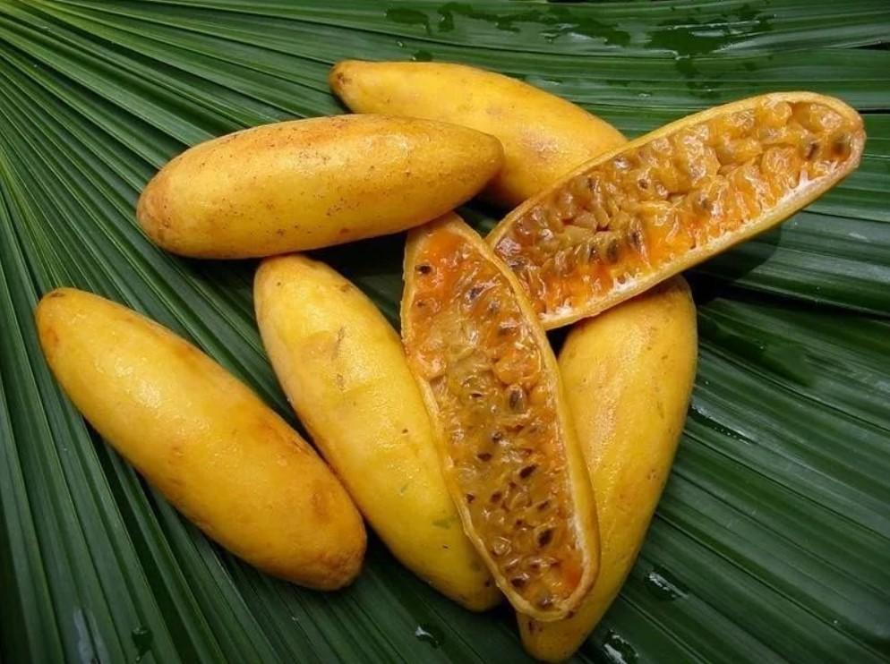 Банановая гранадилла