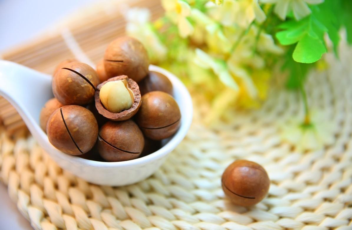 Куда применять скорлупу ореха макадамия