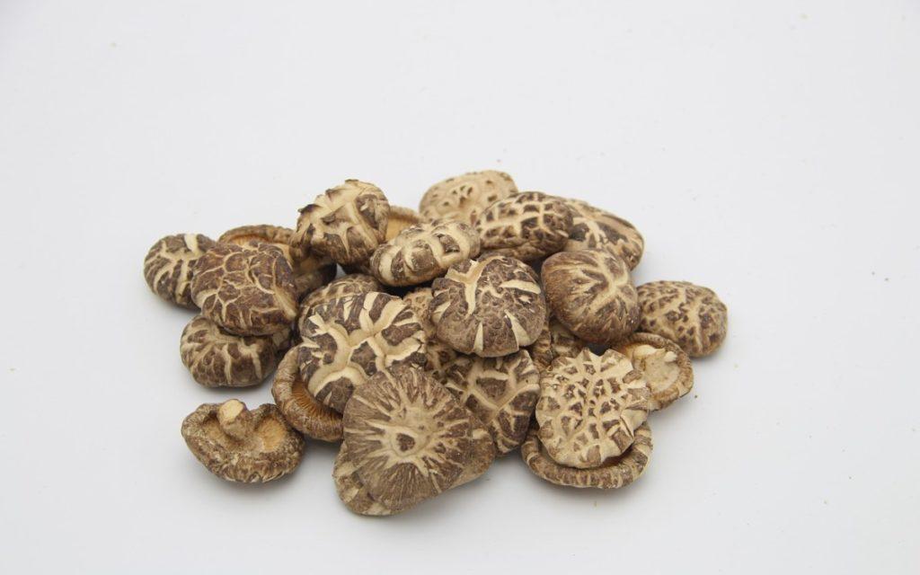 Польза гриба шиитаке
